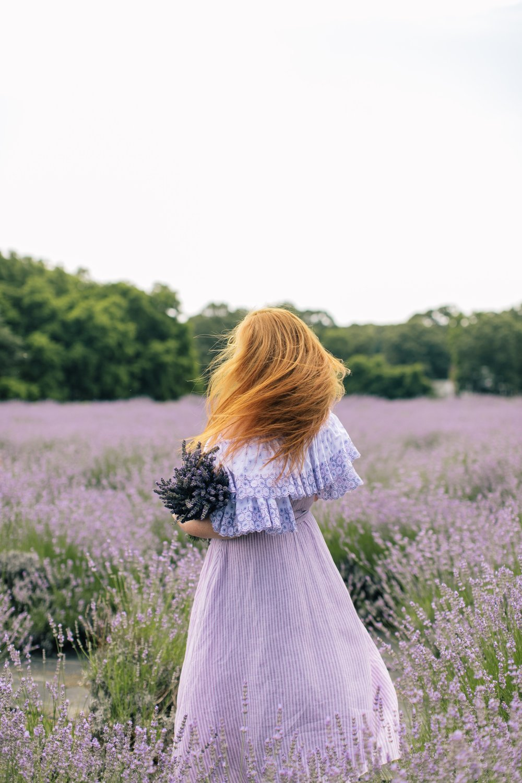 lavenderbythebay-2.JPG