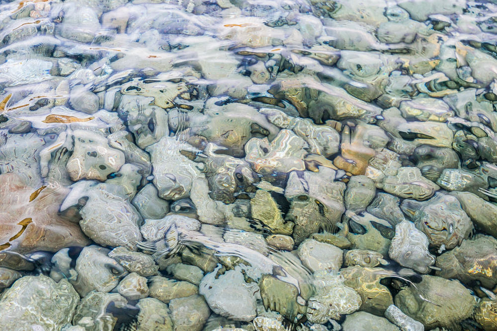 piedras (1 of 1).jpg