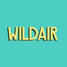 Wildair logo.jpg