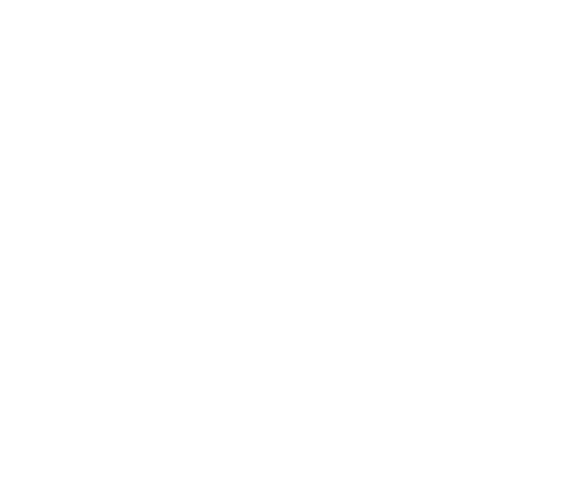 Demon, Wise & Partners
