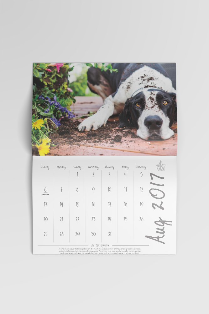 mockup-calendar.jpg