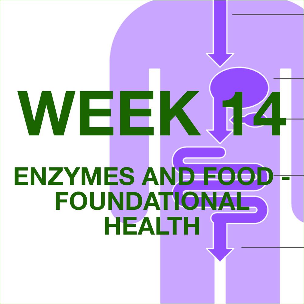 FFFL weekly blog graphic icons -WEEK 14.jpg