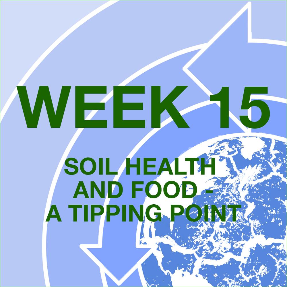 FFFL weekly blog graphic icons -WEEK 15.jpg