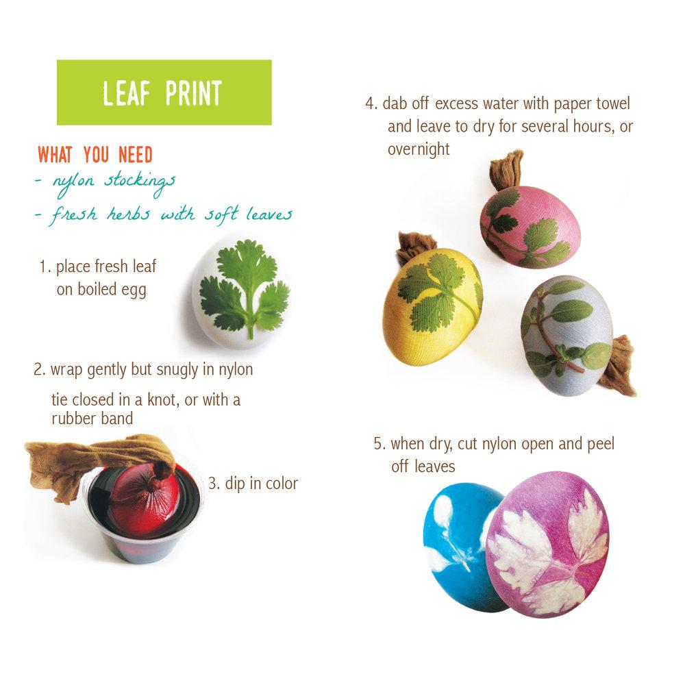 LeafPrint_Instruct.jpg