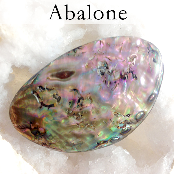 With its beautiful pearly sheen, abalone is a shell that carries the peaceful, calming lull of the sea. It is a comforting and cleansing stone and is excellent for enhancing intuition. It is believed that abalone shell does not absorb energy so it's energy doesn't need periodic cleansing like most other healing stones and shells – on the contrary it cleanses your energy and the energy of any other stones it's near!