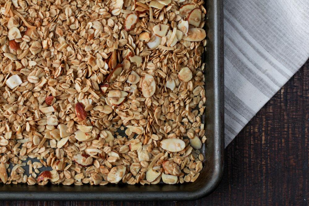 mango-balsamic-coconut-almond-granola-2.jpg