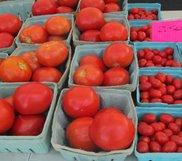 farm-tomatoes.jpg