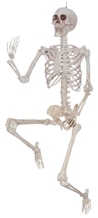 Decor-Skeleton-Human.jpg