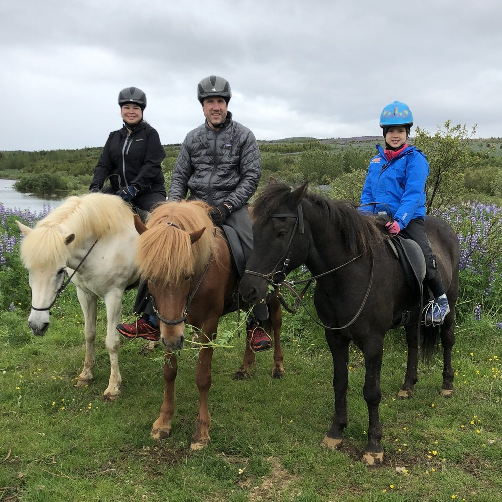 Horse Riding - ICELAND