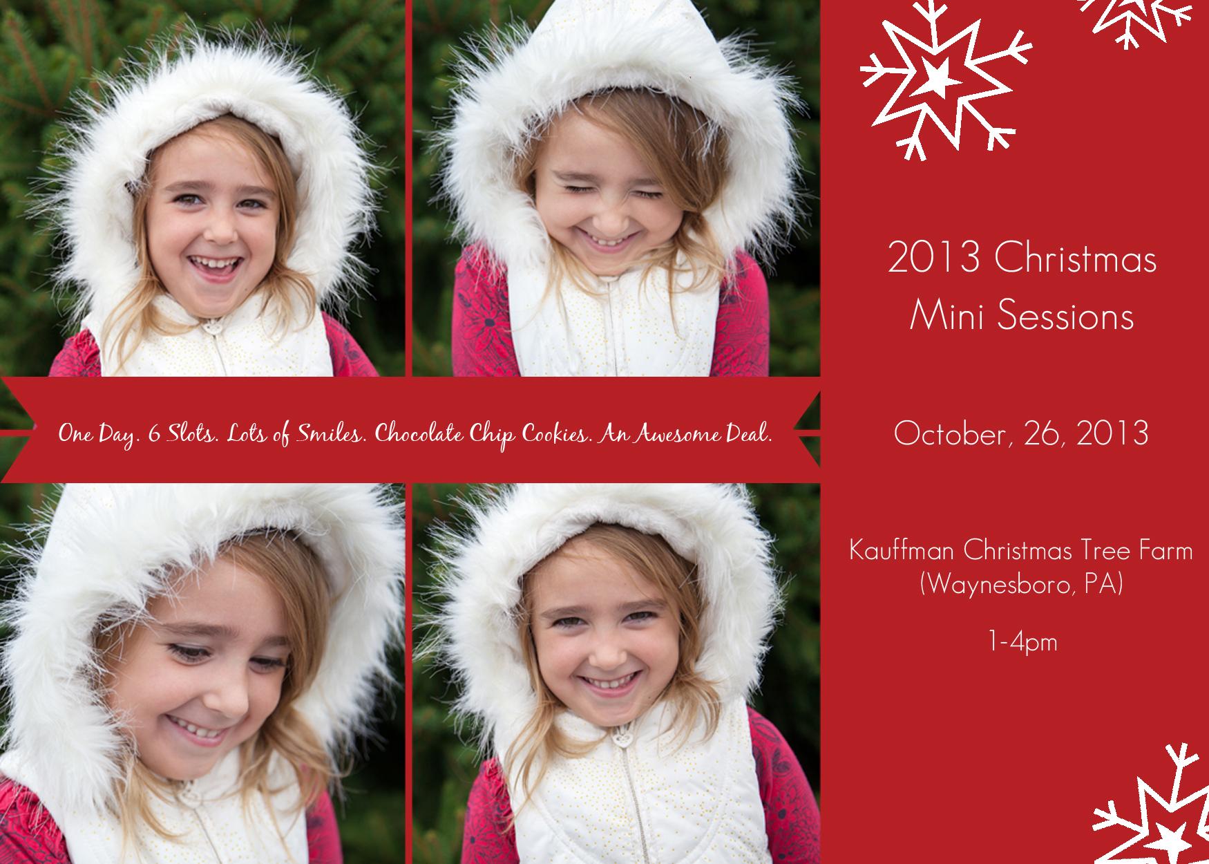 Christmas Mini 2013
