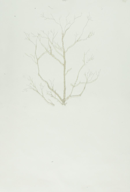WintersNicole14.jpg