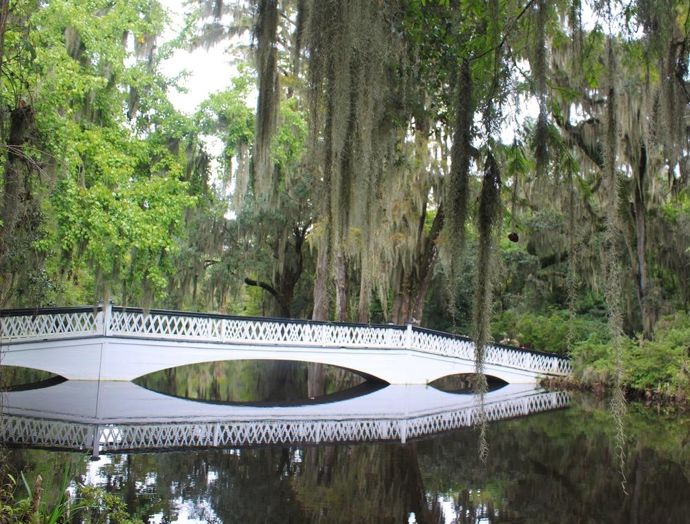 There are so many beautiful bridges at Magnolia Plantation