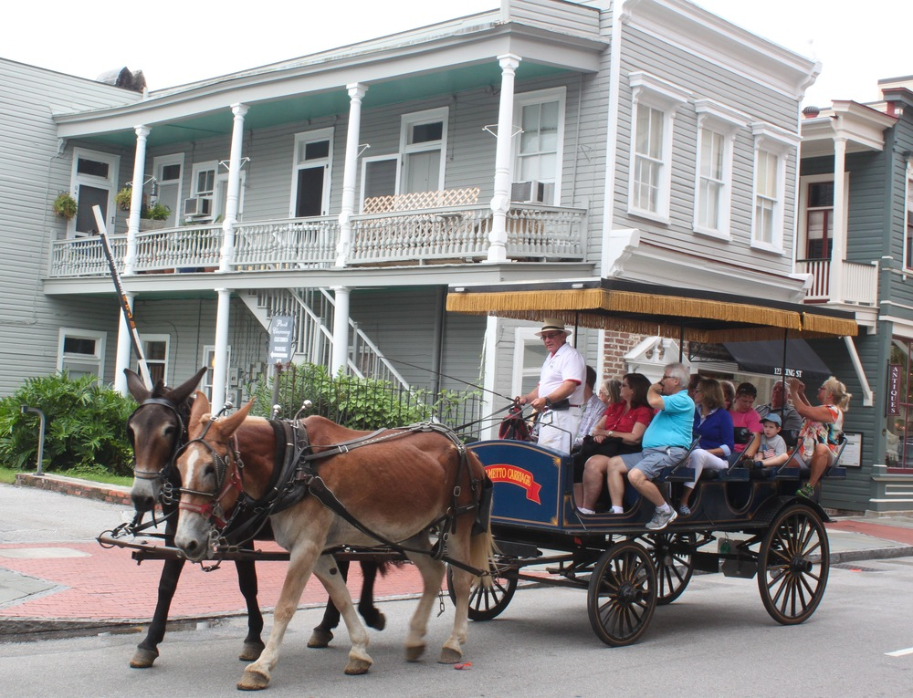 Explore historical downtown in a horse and buggy!
