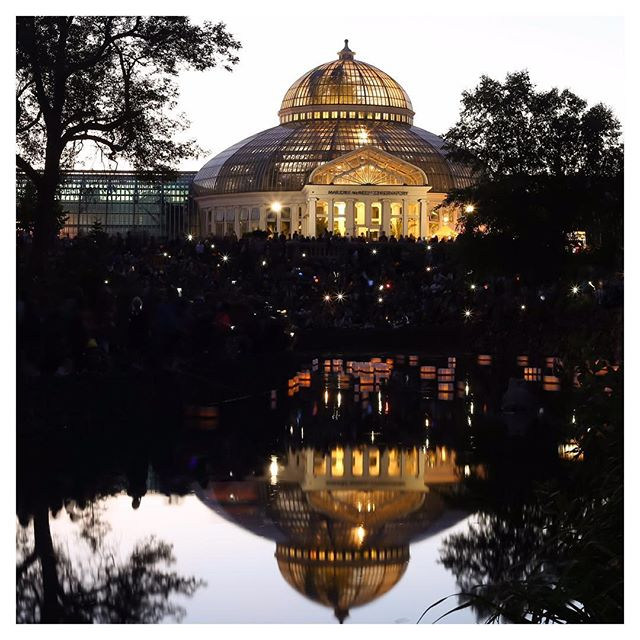 The conservatory looked magical on Sunday all lit up!