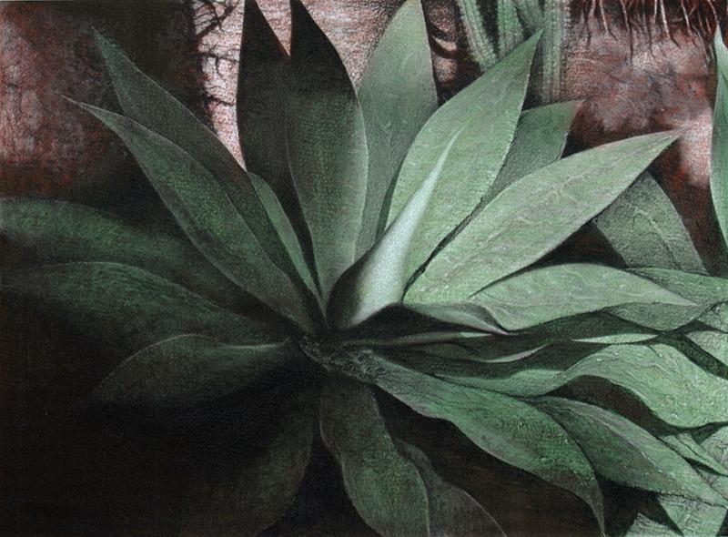 Botanic#6.jpg