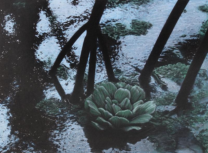 Botanic#8.jpg