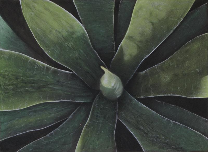 Botanic#14.jpg