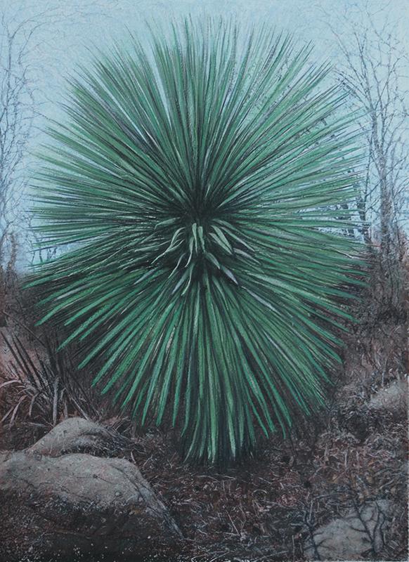 Botanic#15.jpg
