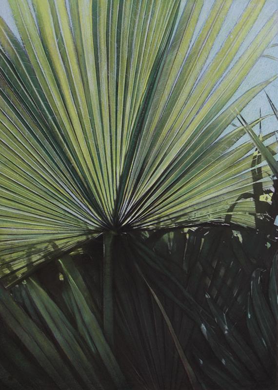 Botanic#20.jpg