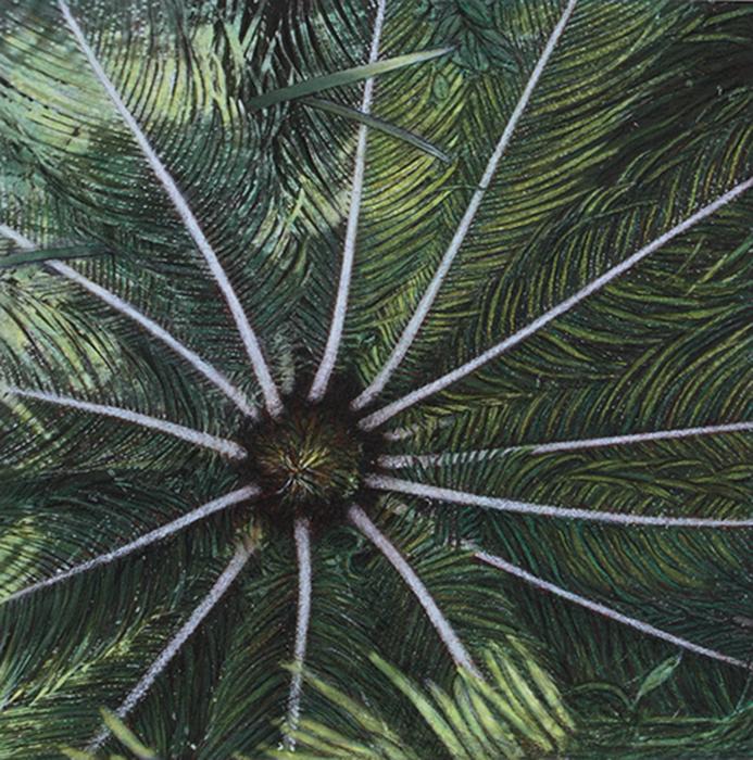 Botanic#1.jpg