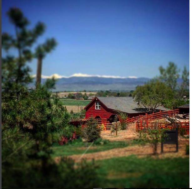 barn landscape.png