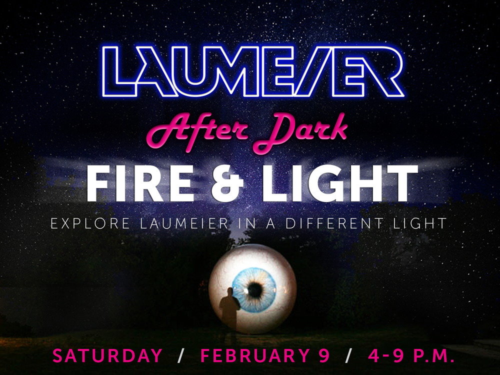 LAD Fire & Light_Eye Graphic.png