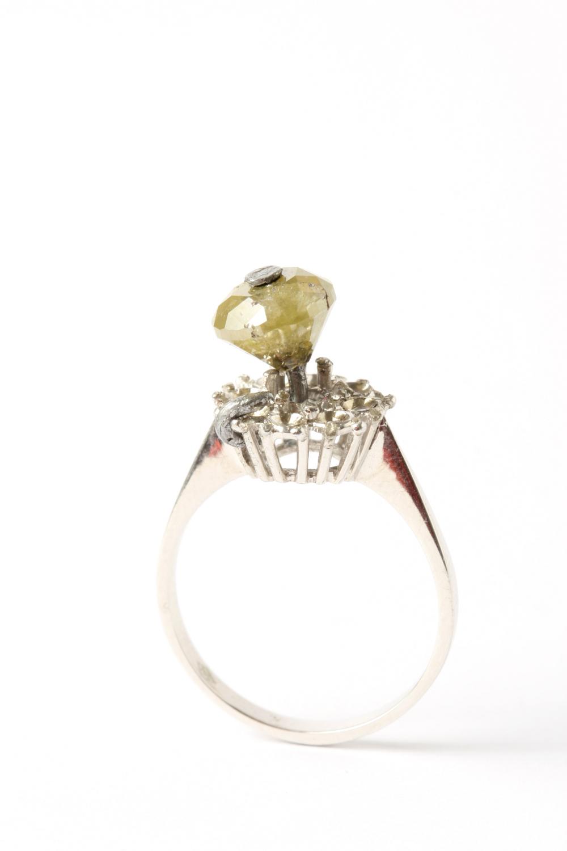 Ring, 2010, Karl Fritsch