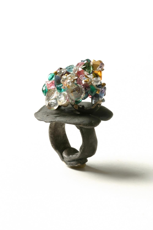 Ring 171, 2004, Karl Fritsch