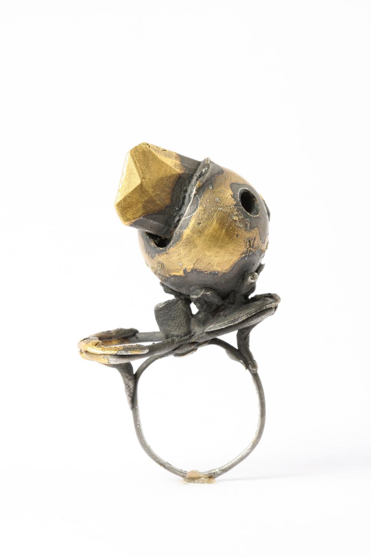 Ring, 2006, Karl Fritsch