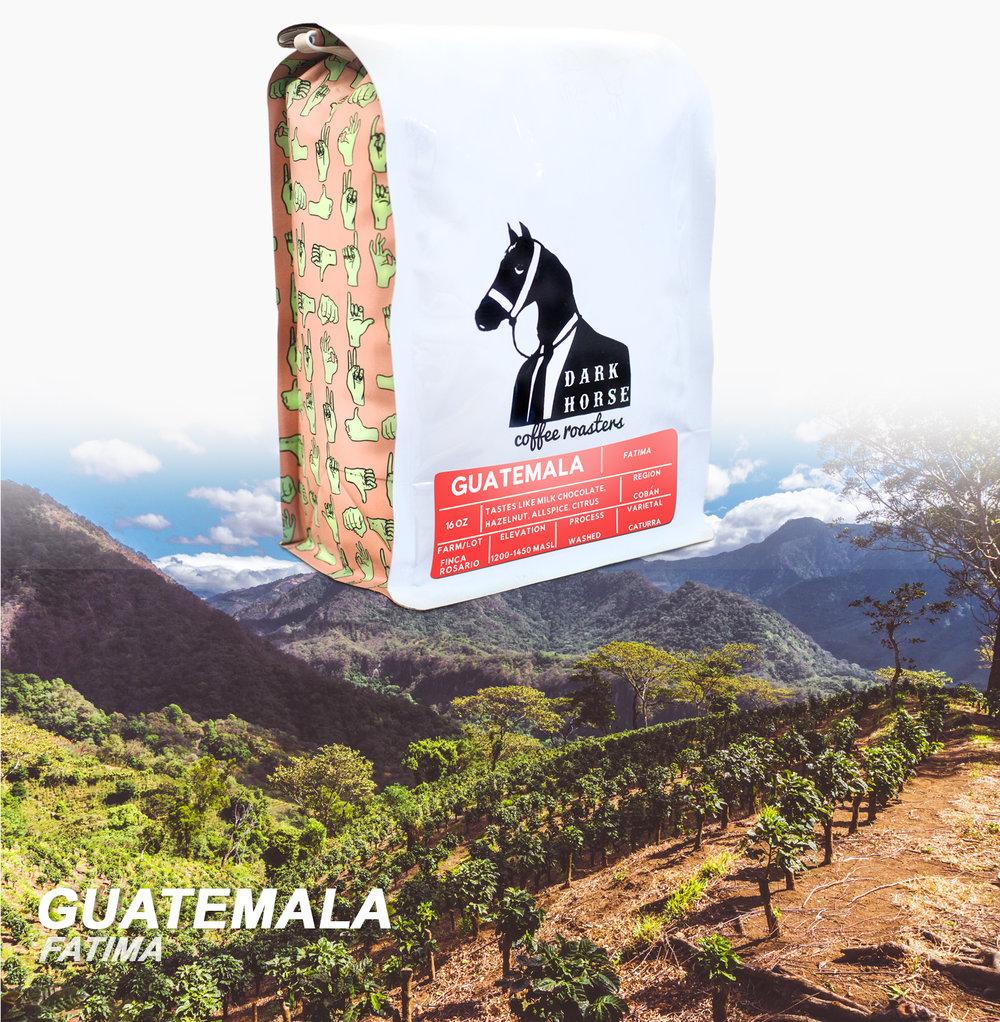 Guatemala_FatimaTopBagAndBG.jpg