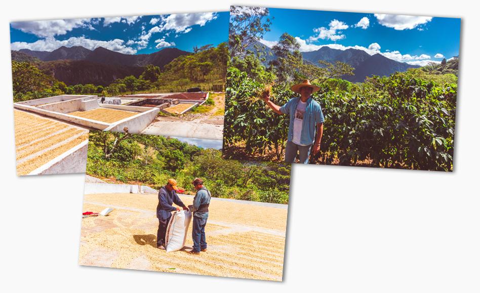 Guatemala_LowerImgeCollage.jpg