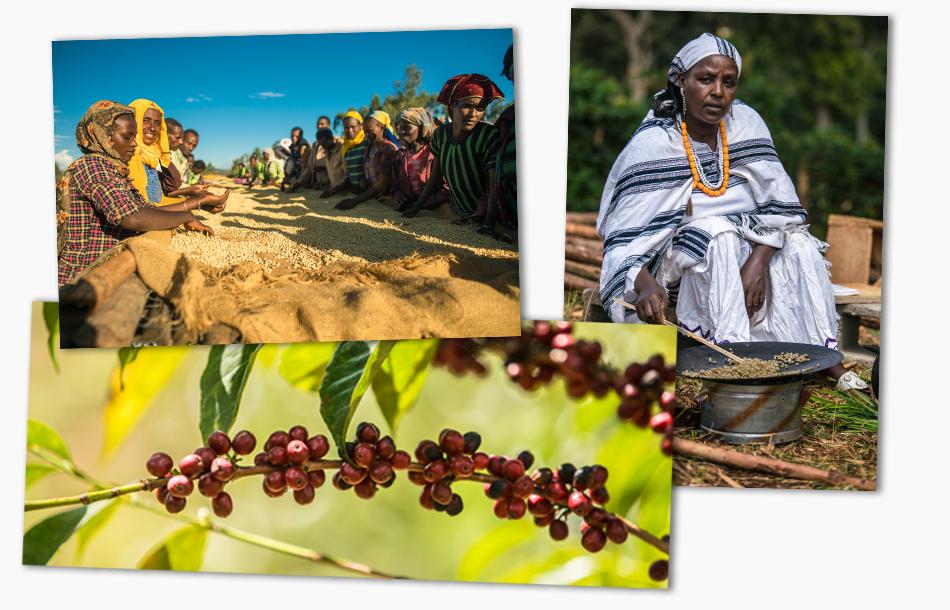 EthiopiaPhotoCollage.jpg