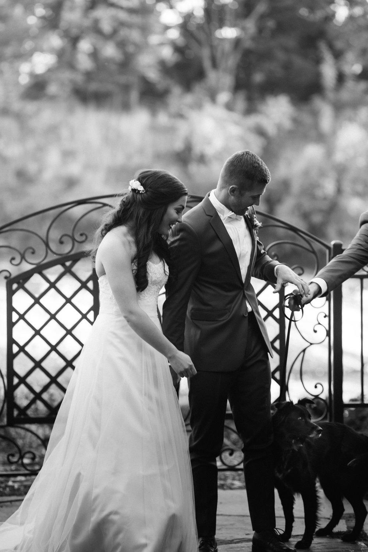 Wedding Photos-355.jpg