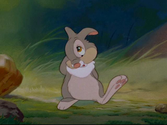 Thumper.JPG