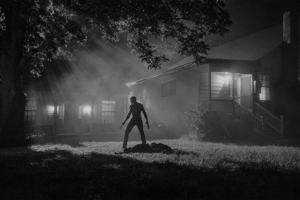 Logan-Noir-standing-1500x1000.jpg