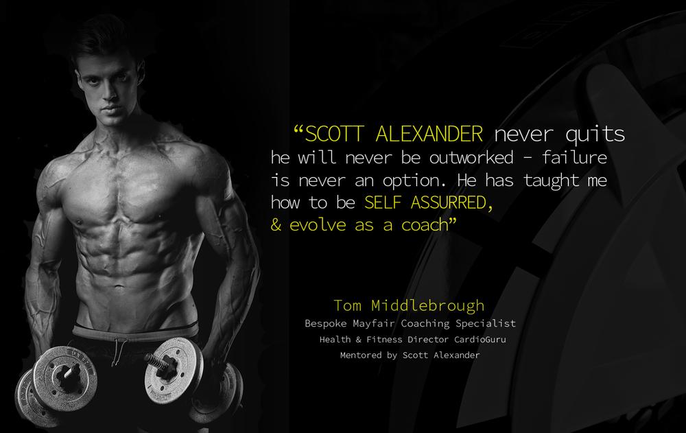 scott alexander twitter