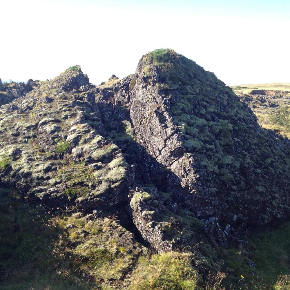 Lava and moss in the Gálgahraun lava field near Reykjavik.
