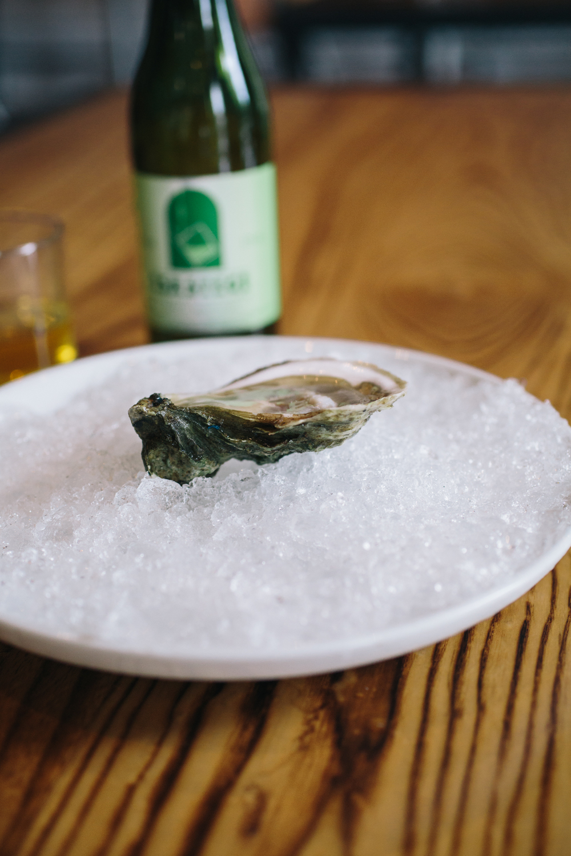 oysterssprits 009.jpg