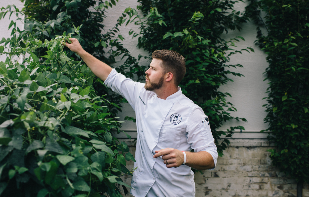 David Bancroft talking our team through his garden at Acre restaurant, which is planted in every spare patch on the property, including the medians.