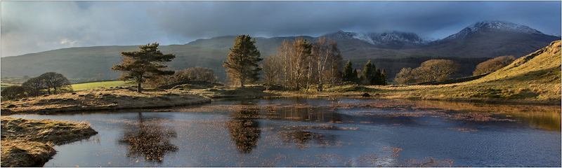 Torvar Tarn by Janet Griffiths - C