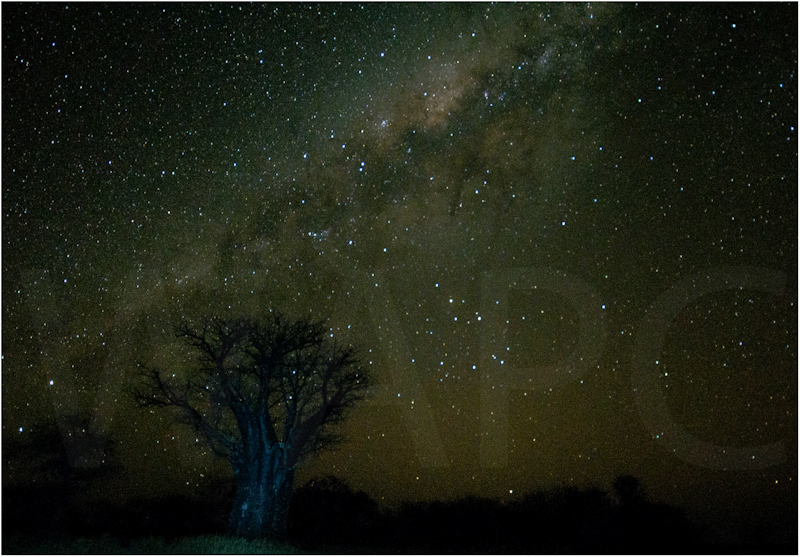 Milky Way over Kalahari