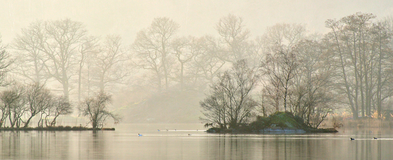Misty Rydal Water