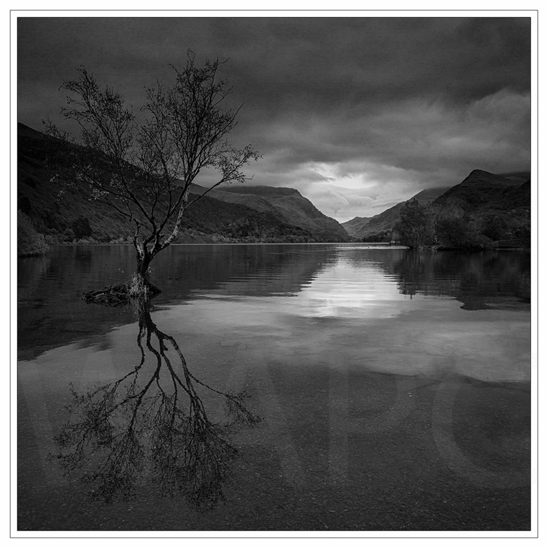Llyn Padarn by Janet Griffiths - 2nd (adv mono)
