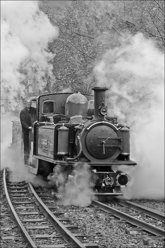 Ffestiniog Railway by Peter Hodgkison - 3rd (int mono)