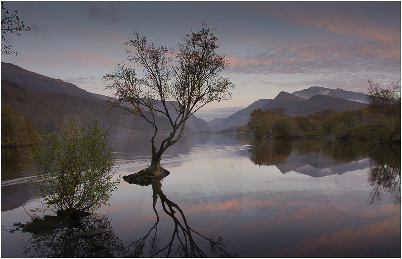 Llyn Padarn Sunrise by Alan Lees - C (Adv)