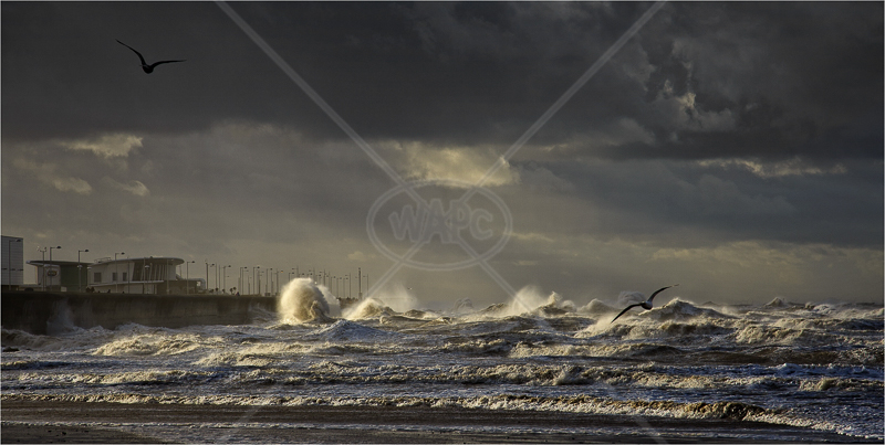 New Brighton Seascape by Tony Thomas - C (Adv)