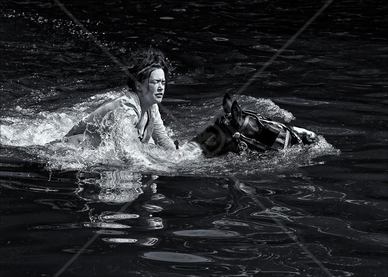 Going for a Swim by Tony Thomas - HC (Adv mono)