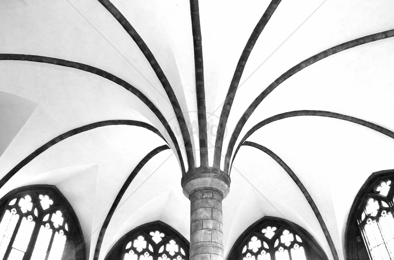 Chapterhouse Ceiling,worcester Cathedral by Peter Hodgkison - 2nd (Int mono)