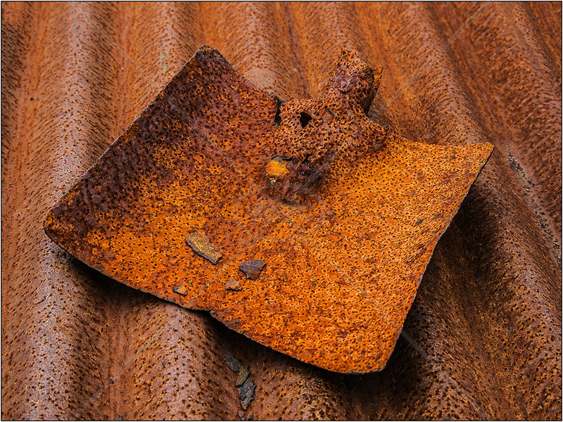Rusty Shovel by Ian Griffiths - C (Int)