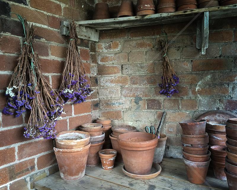 The Old Potting Shed by Carole Mathews - HC